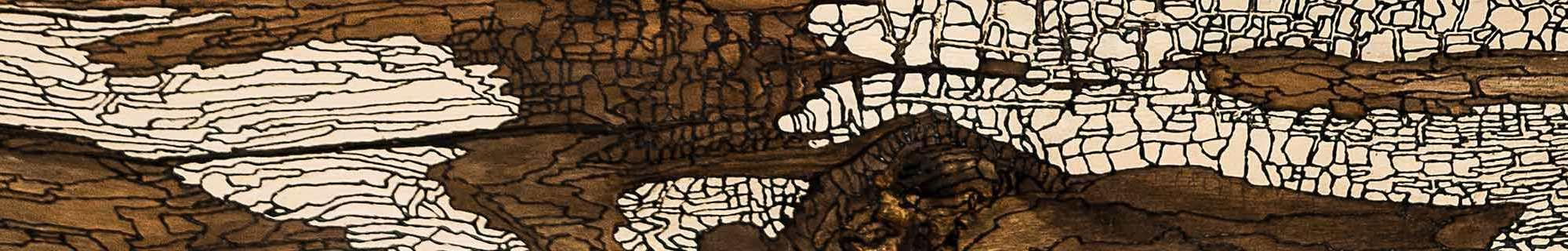 Aile d'Ange - détail - 128 x 46cm - acrylique sur bois flotté - © Annie Thérie