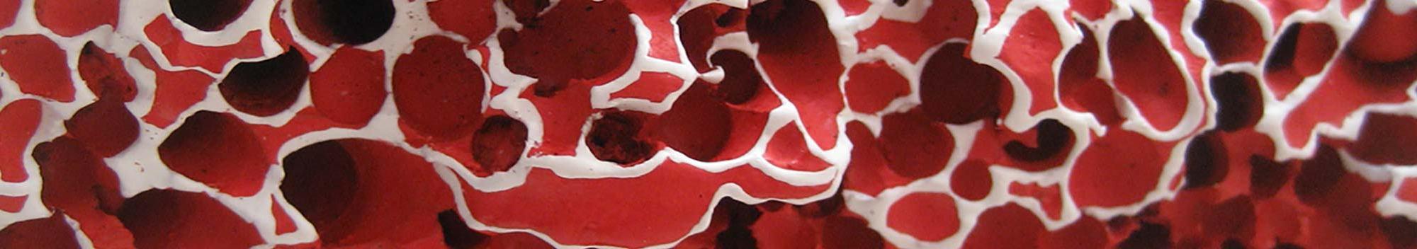 Corail - détail - 42 x 87 cm - acrylique sur bois flotté - © Annie Thérie