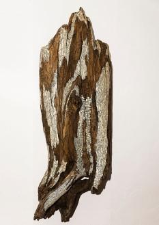 Aile d'Ange - 128 x 46 cm - acrylique sur bois flotté - © Annie Thérie