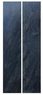 CALLIANASSA - dyptique 67cm1,63m