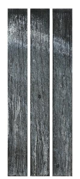 THEMISTÔ - tryptique 28cm1m